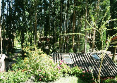 Vista_desde_bungalow2